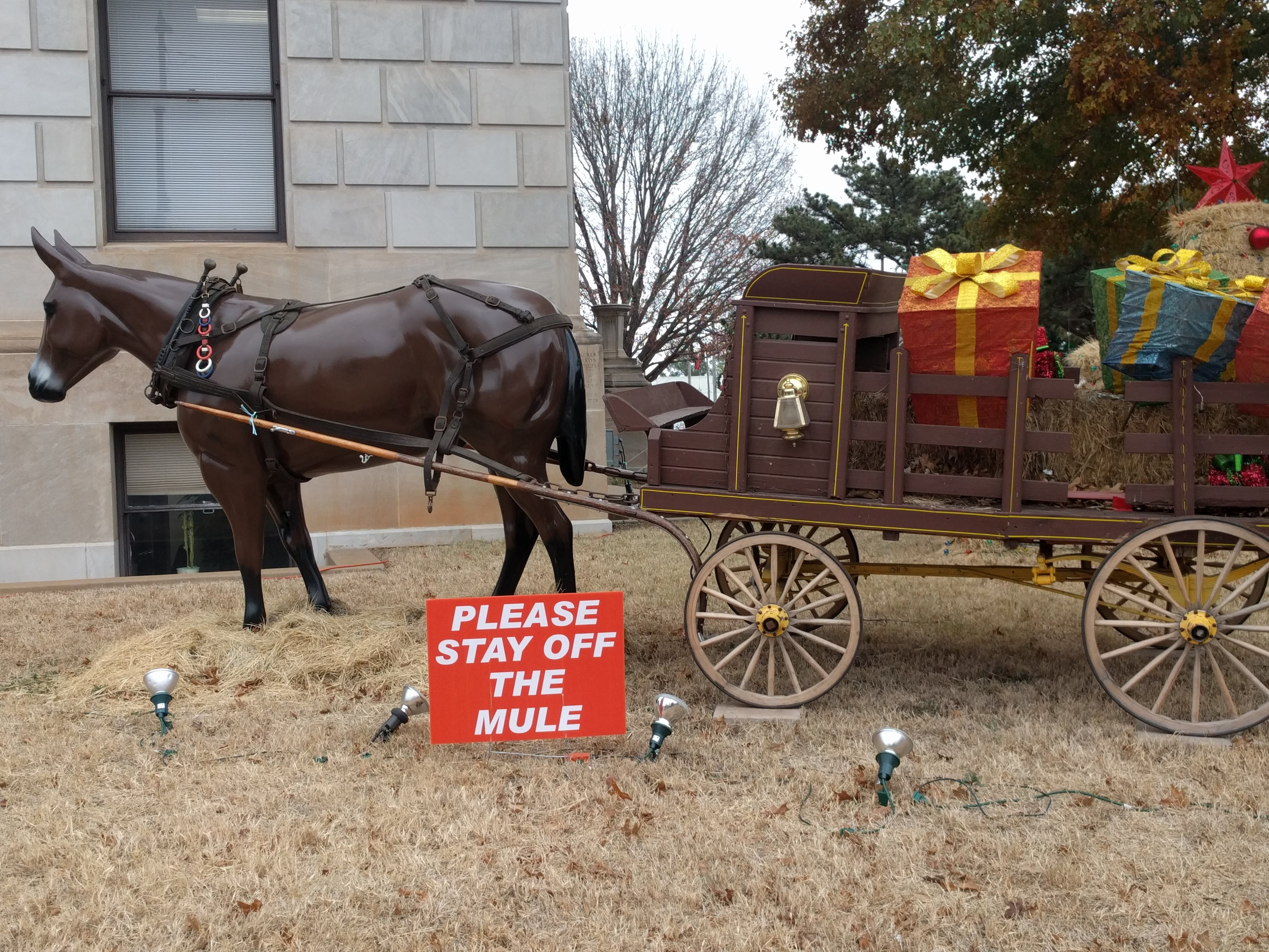 Stay Off The Mule
